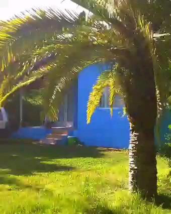 ویدیو تورگردی | زیبا کنار ، گیلان