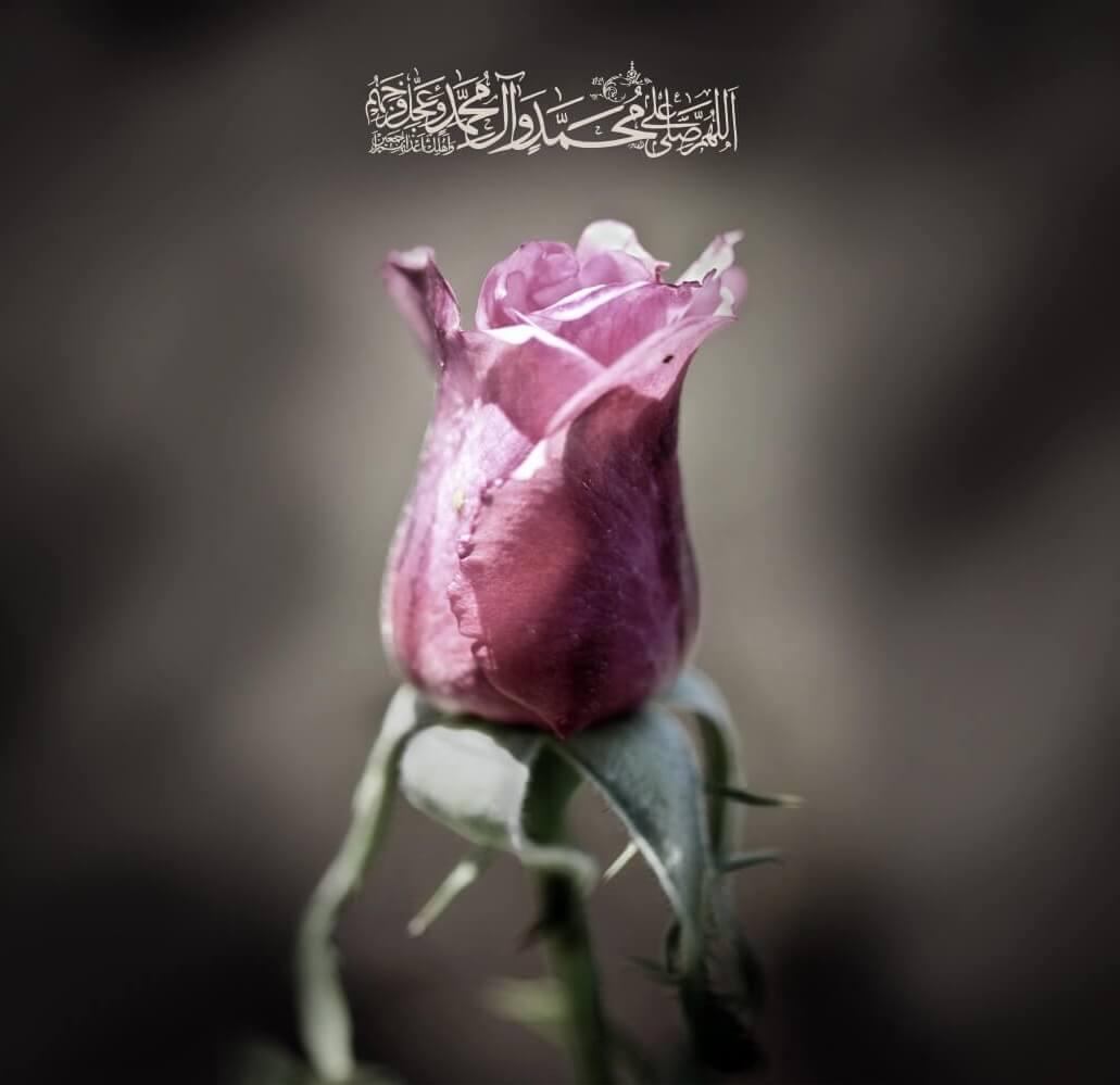 اللهم صلی علی محمد و آل محمد