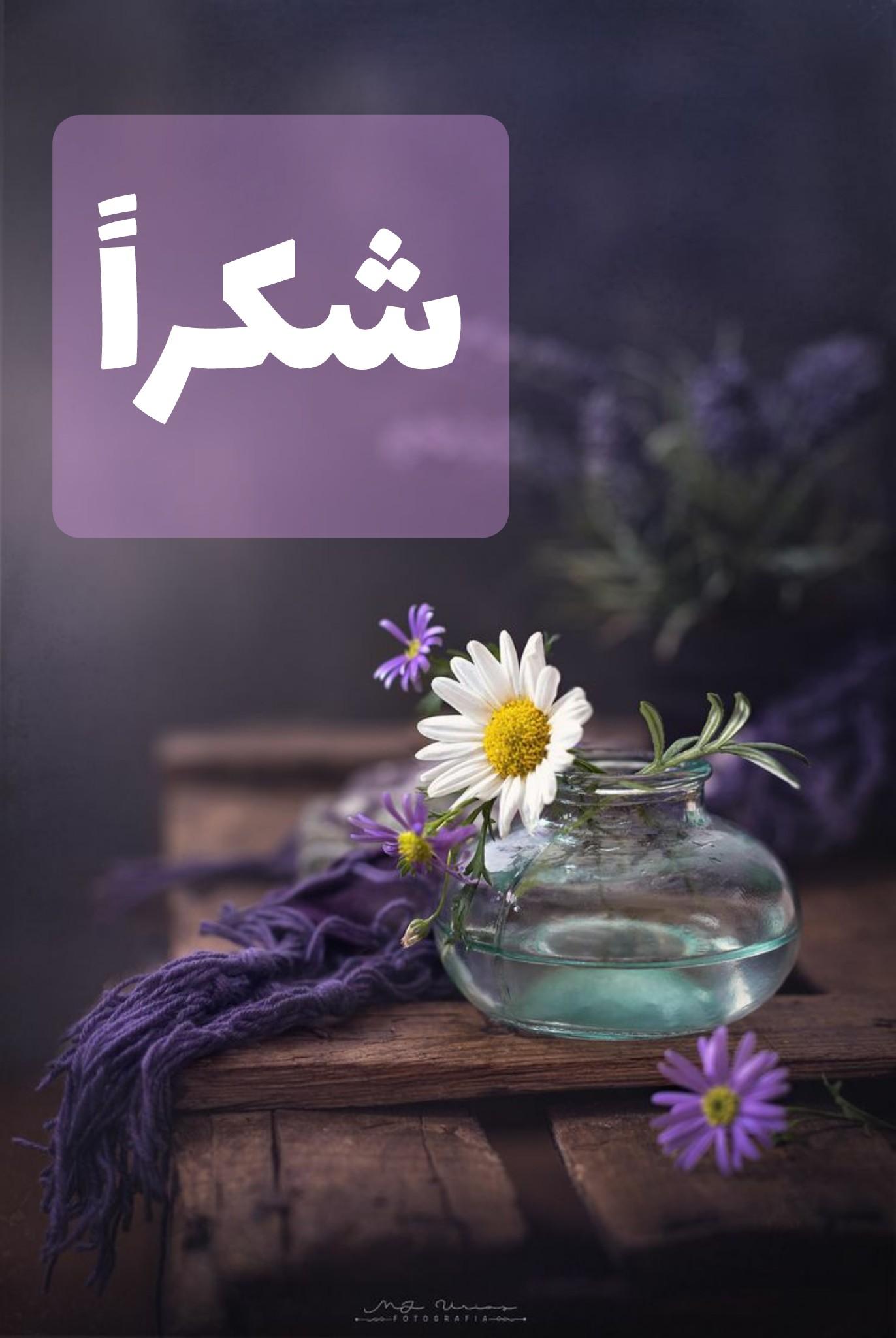گیف تشکر عربی | شکراً