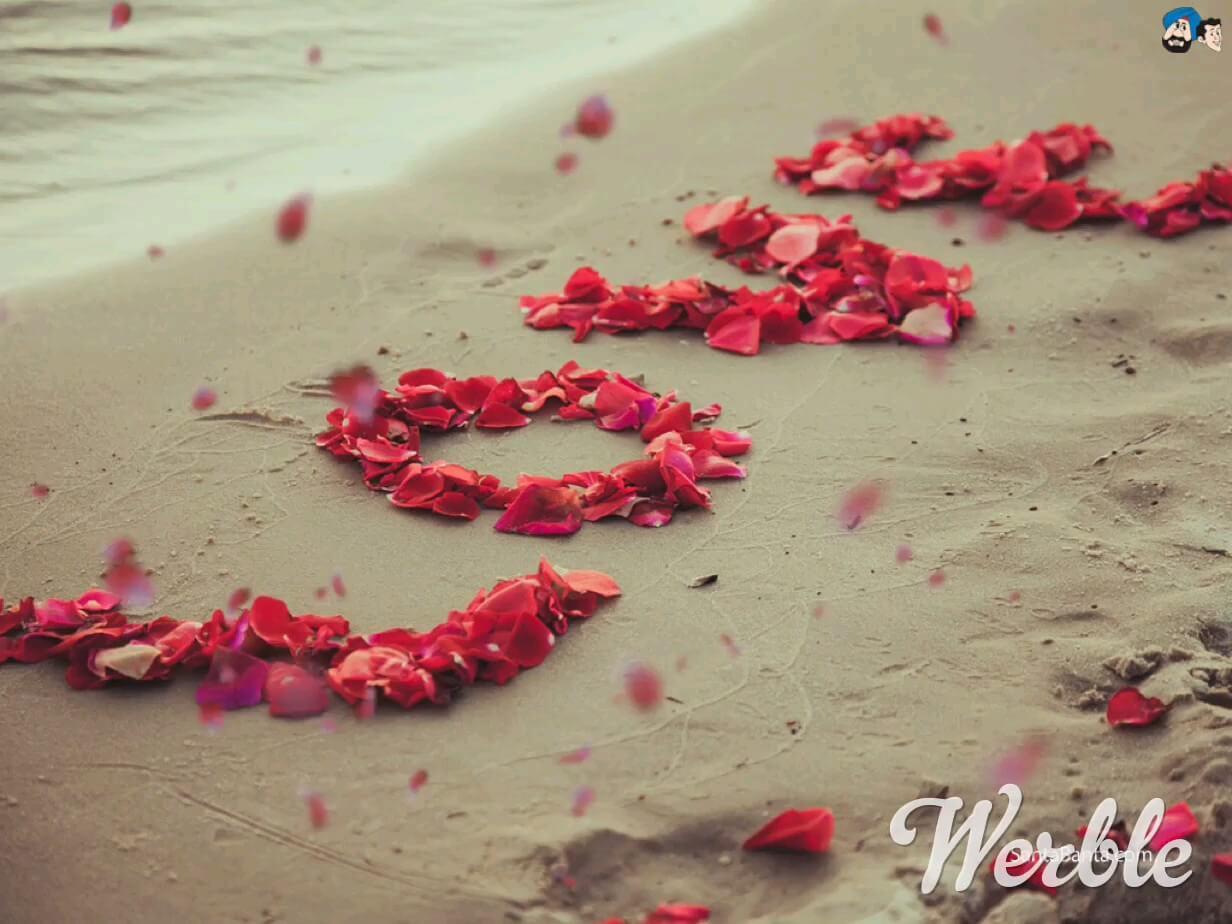 Gif love | گیف لاو