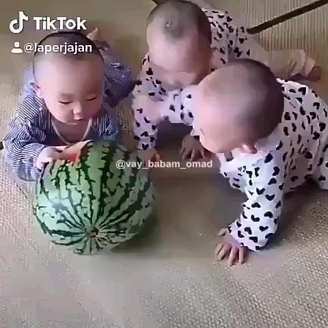 دعوای خنده دار و بامزه نی نی کوچولوهای سه قلوها سر هندوانه :)