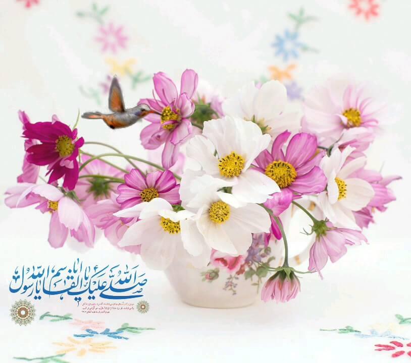 گیف متحرک ولادت حضرت محمد (ص)