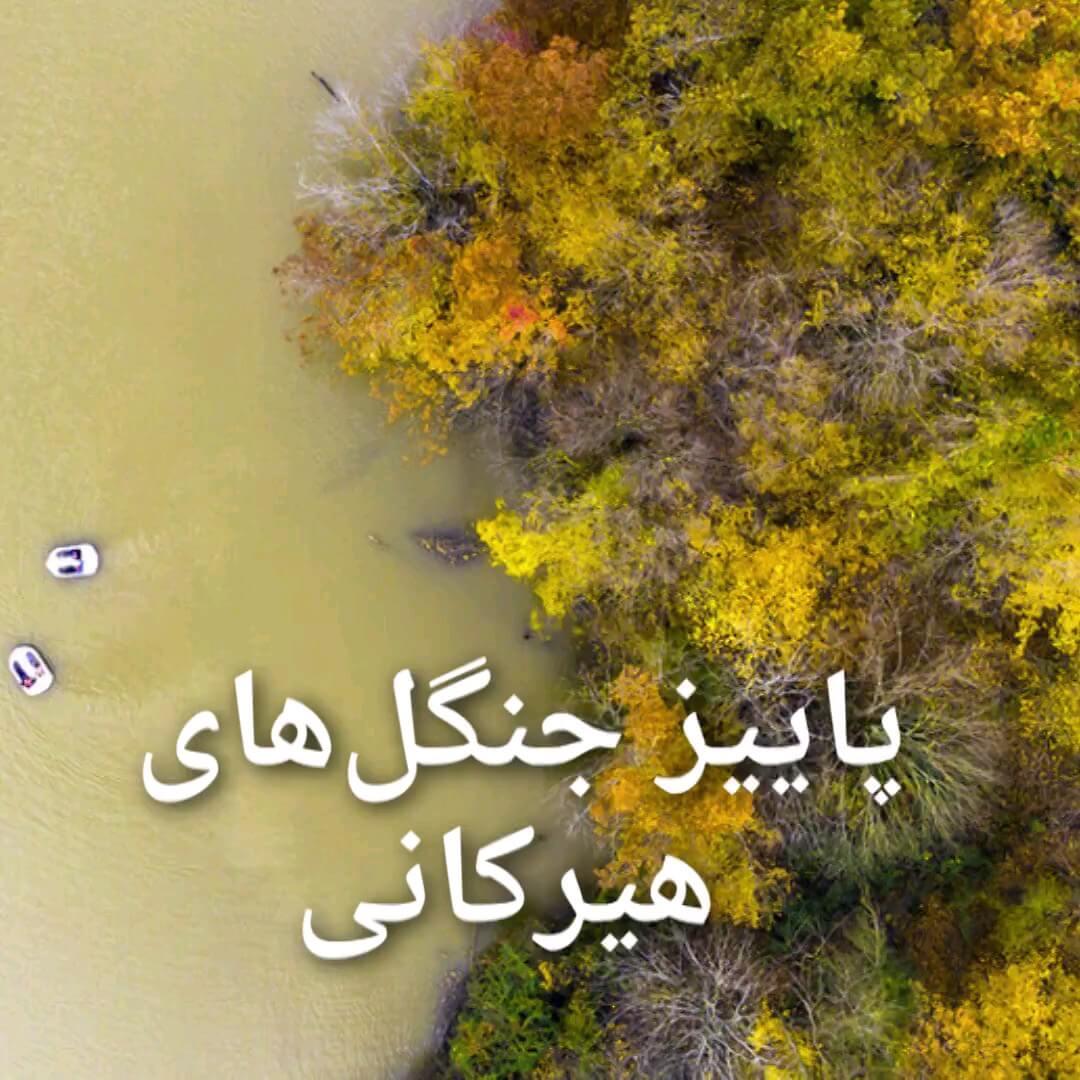 عکسهایی از پاییز جنگلهای ۴۰ میلیون ساله هیرکانی در ایران