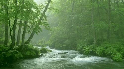رودخانه زیبا