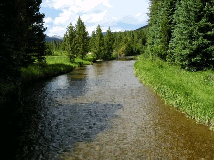 رود کوچک زیبا