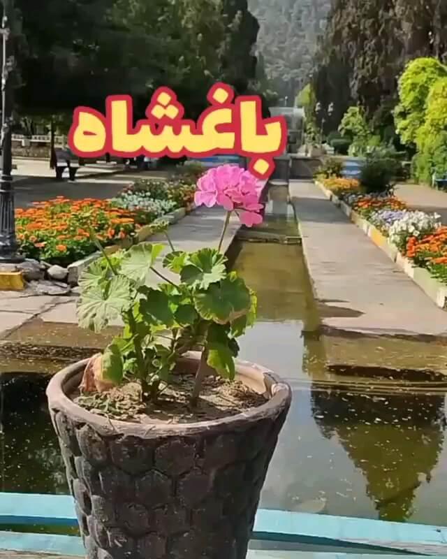 باغ مصفا بهشهر | پارک باغشاه