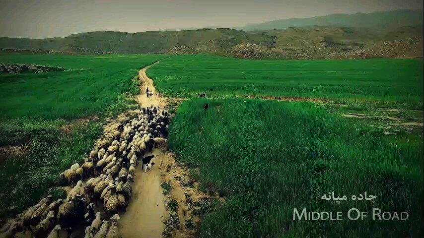 فیلم طبیعت زیبای دزفول در خوزستان
