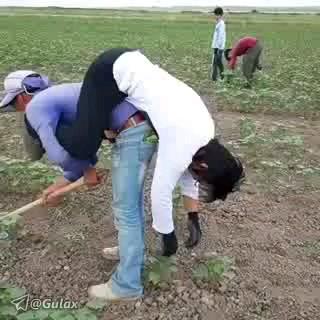 دستگاه فوق پیشرفته کشاورزی :)) | کلیپ طنز جدید