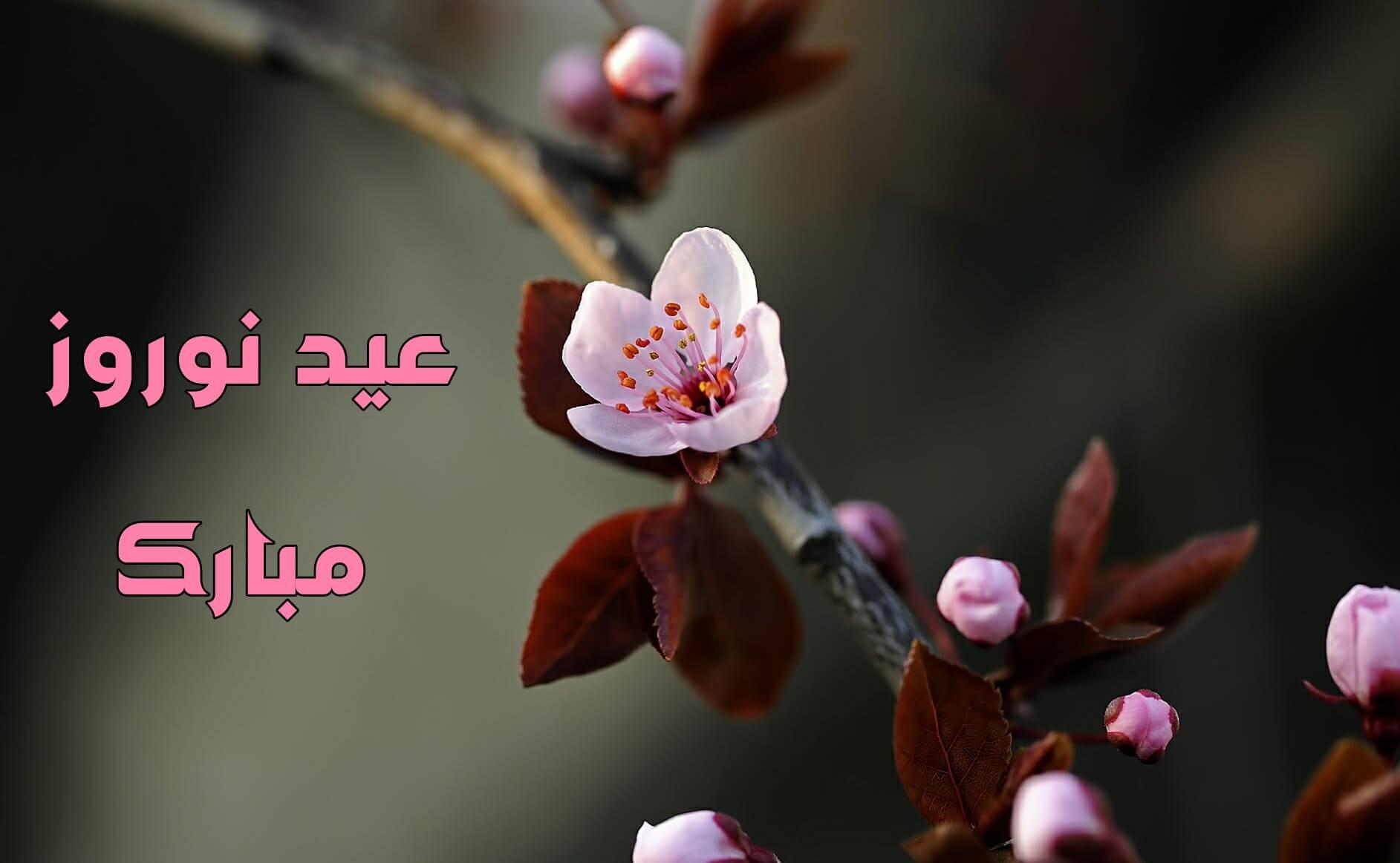 کارت پستال موزیکال عید نوروز مبارک