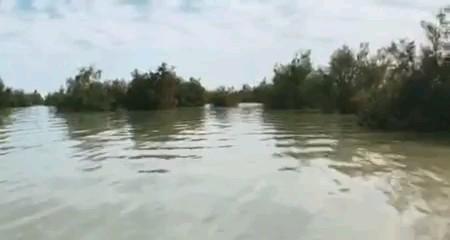 فیلم دریاچه هامون سیستان و بلوچستان