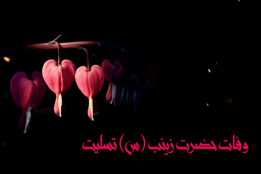 وفات حضرت زینب (س) تسلیت باد