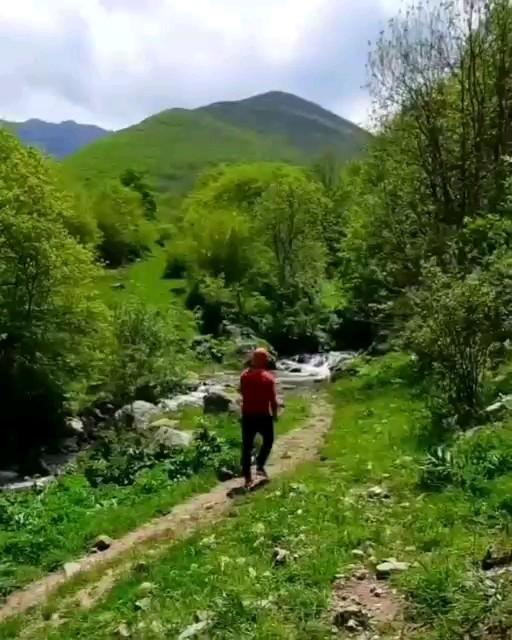 طبیعت زیبای جنگل های قره داغ ، کلیبر ، آذربایجان شرقی